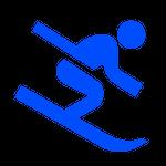 Alpinskifahren - © Icons 8